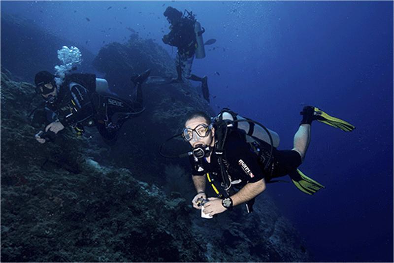 Diving-20WEB