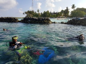 Coral garden in Thulusdhoo, Maldives