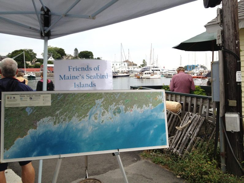 Friends of Maine's Seabird Island