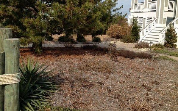 corolla-landscaping-before-2