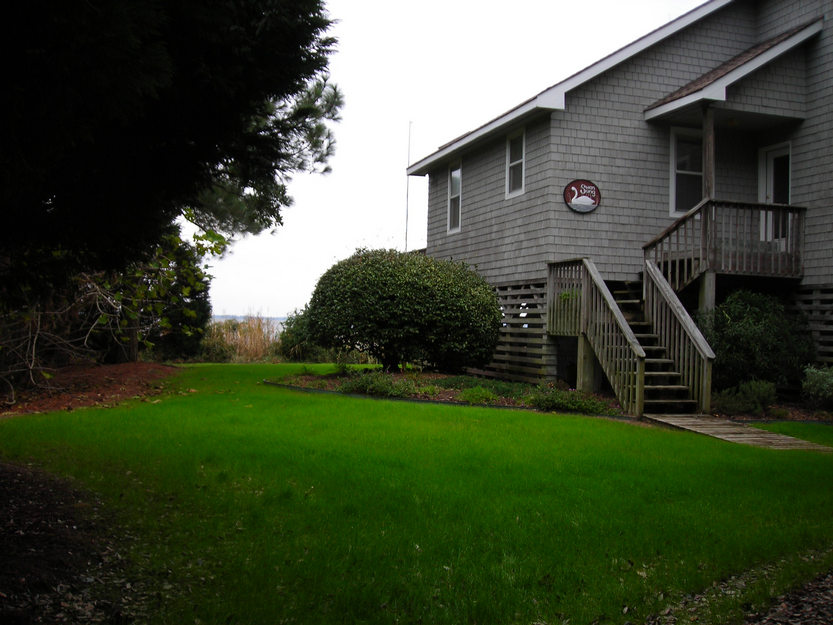 winter-lawn-growth-corolla-nc-2