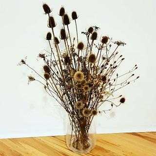 Sinister Arrangement of Dead Plants