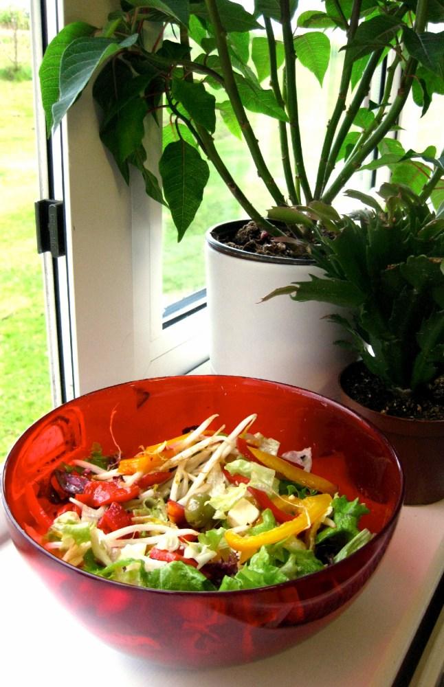 Detox Vegetable Soup and Crunchy Mixed Salad (2/3)
