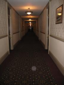 Shining Ball Stanley Hotel