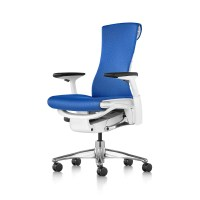 Herman Miller Embody Chair | Seated