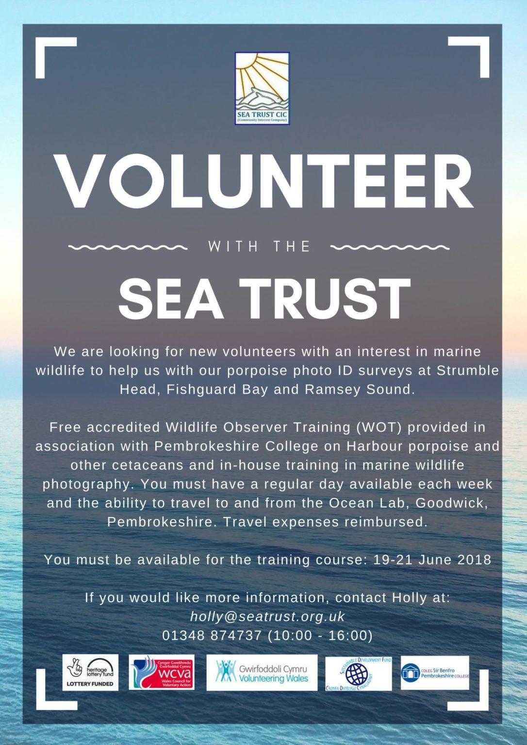 Volunteer poster - peoples porpoise