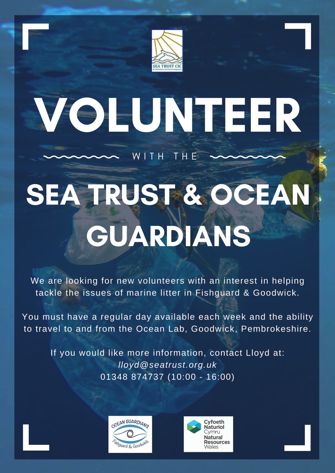 Volunteer poster Ocean Guardians