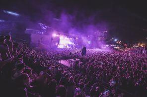purple-concert