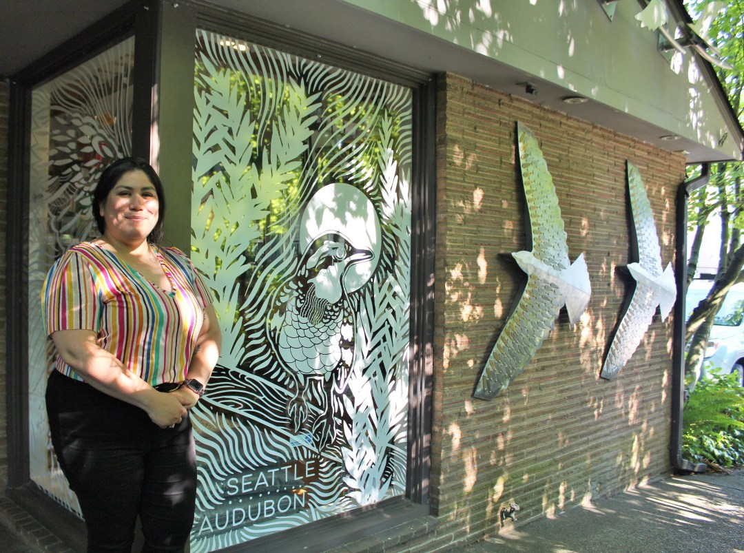 Artist Angelina Villalobos stands next to the custom art she designed at Seattle Audubon's Nature Shop. The art depicts a Varied Thrush. The art was transferred to a vinyl window application, making the window visible to birds.