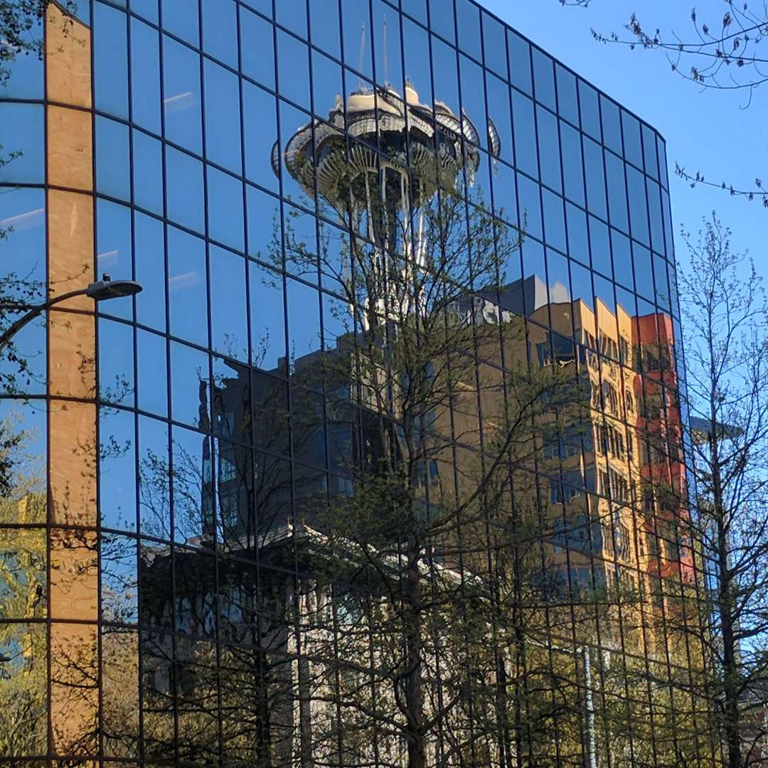 A building in Seattle with a mirrored exterior show the reflection of trees and the Space Needle. The image illustrates what a bird sees and why reflective building surfaces cause birds to fly into them.