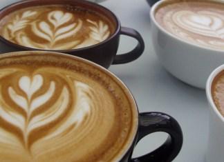 seattle coffee - coffee fest
