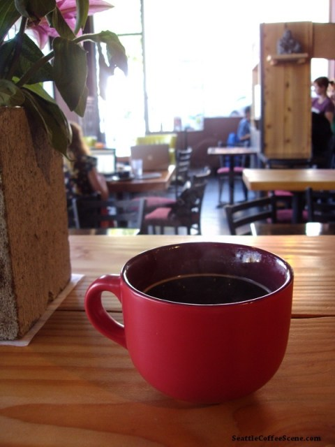 seattle coffee, coffee, kaladi brothers, seattle