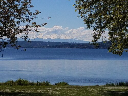photo across water to snow-capped peak (Mt. Rainier)