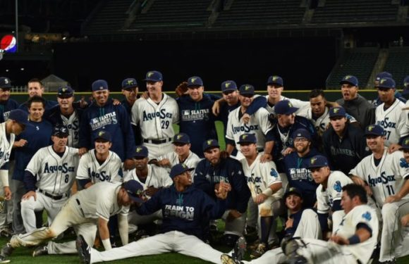 Everett AquaSox 2016 Season Recap