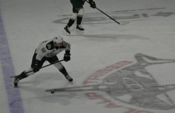 Everett Silvertips and Seattle Thunderbird rivalry intensifies