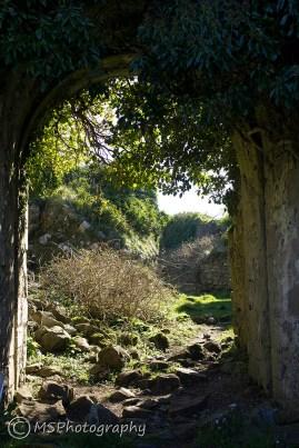Rindoon Castle - (C) Marta Stoklosa