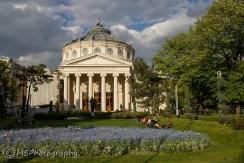 Bucharest - Romanian Atheneum - (C) Marta Stoklosa