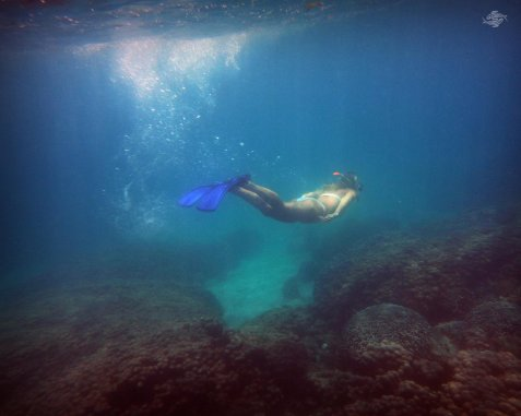 Renee Blundon at a Reef off Cost of Mbudya Island 1280 x 1024