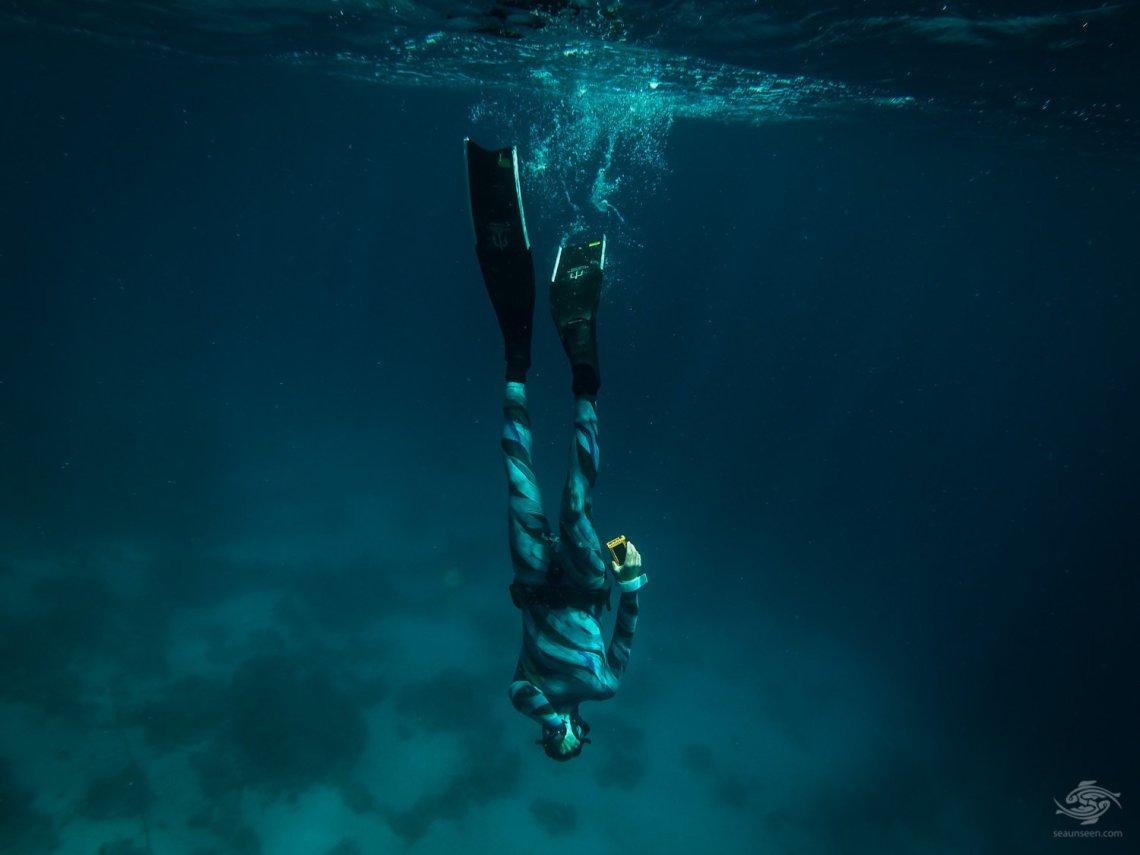 sharm el sheikh freediving