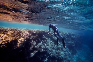 sharm freediving