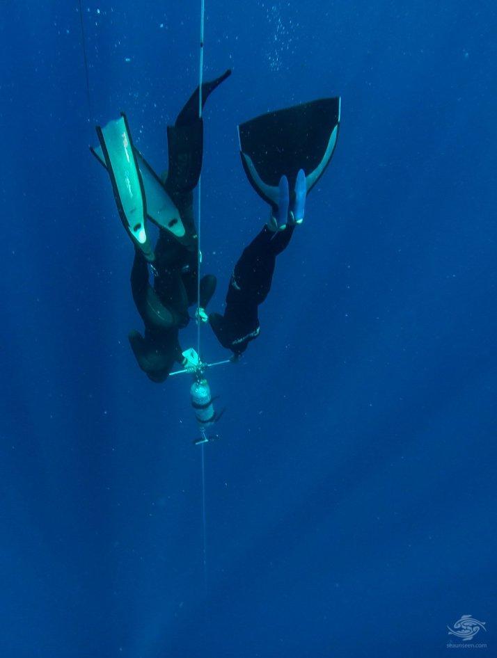freediving no-limits sharm el sheikh
