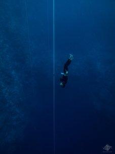 freediving dahab