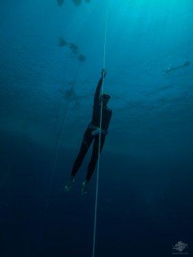 scuba diving freediving dahab
