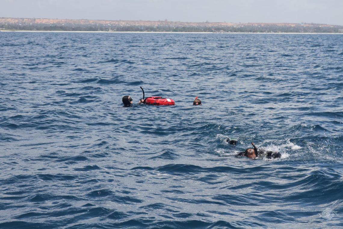 Free divers near Fungu Yasin