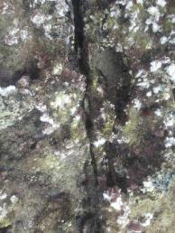 Shutter marks on city foundations
