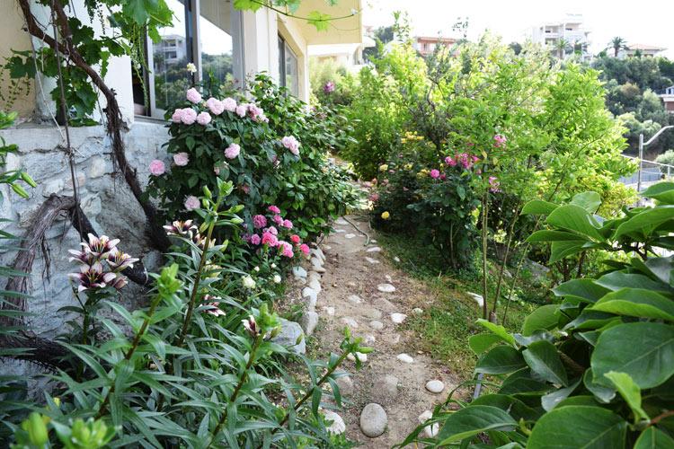 Ανθισμένα λουλούδια στα παρτέρια του κήπου