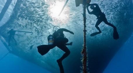 Marine aquaculture -America forges ahead