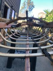 The bow of the kayak after removing the old skin and re-steaming ribs and fixing stringers.