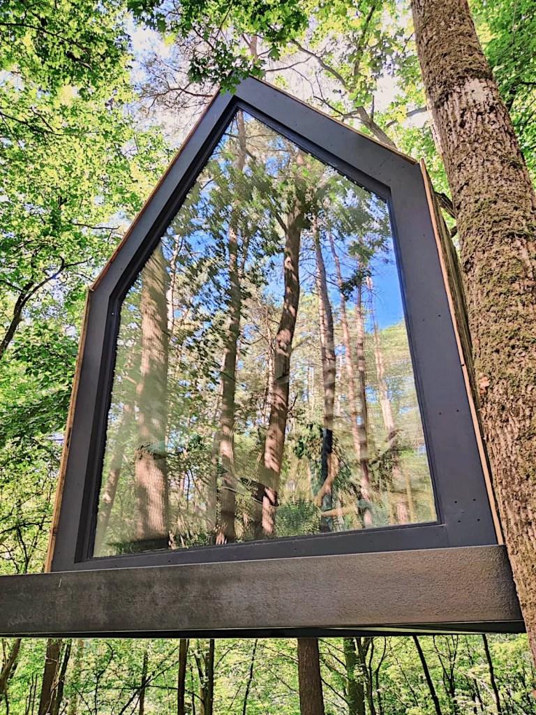 cabane arbres slô