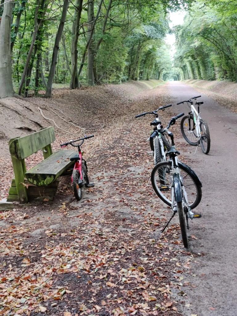 balade en vélo dans la forêt de chantilly avec bobebike dans l'oise