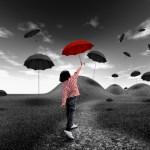 Umbrella Insurance?