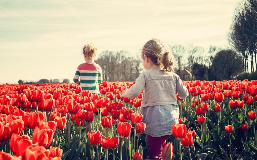 1 Martie-Primavara-Renasterea naturii si a sufletului