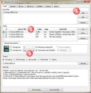 Multimedia-ConversionMKV-TsMuxer01 lire un mkv