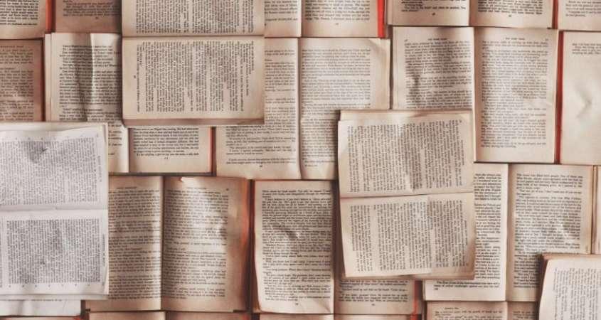 Begleitende Literatur