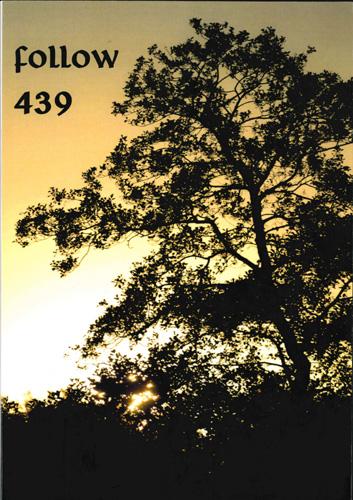 Fantasy Club e.V. - Follow, Nr. 439