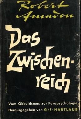 Das Zwischenreich – Schutzumschag Titelcover