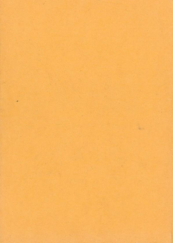 Fantasia, NR. 11/12 - Rückencover