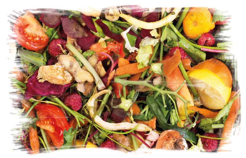 Biodigestão de Lixo