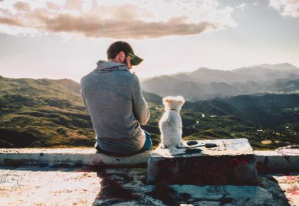 Dog and man sitting on wall