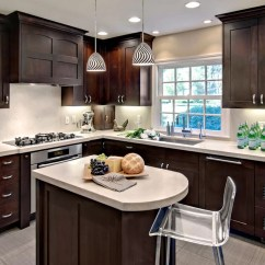Updated Kitchens Finance Kitchen Cabinets 30 Classy Projects With Dark Home Remodeling Sebring Services