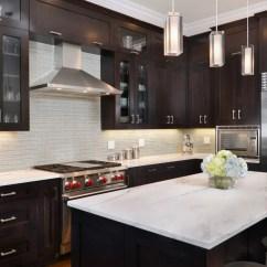 Kitchen Design Services Online Black And White Accessories Pictures Dark Cabinets  Wow Blog