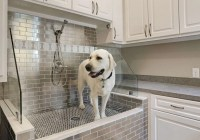 Outstanding Dog Shower Ideas & Pet Washing Stations | Home ...