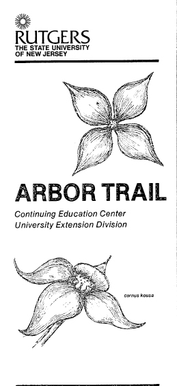 The Arbor Trail : Newsroom