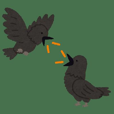 bird_karasu_talk.png