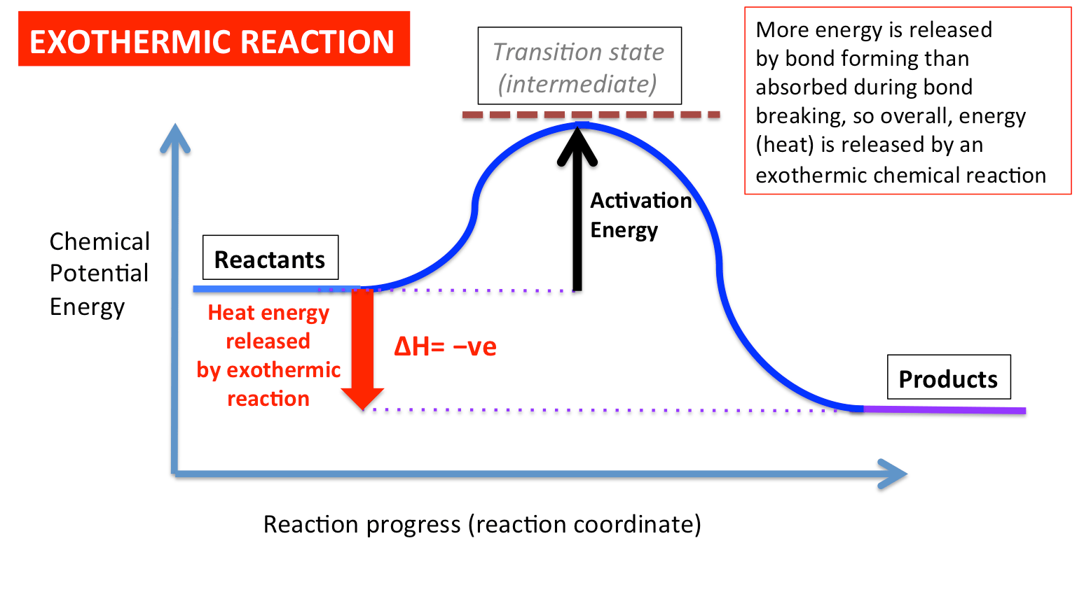 hight resolution of an exothermic energy level diagram slide01