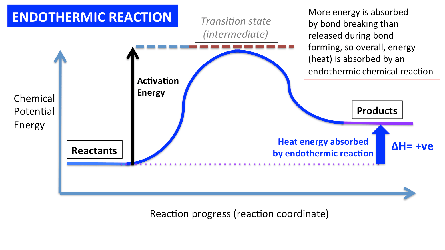 hight resolution of an endothermic energy level diagram slide02